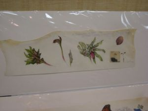 Kate Nessler's stitched vellum piece