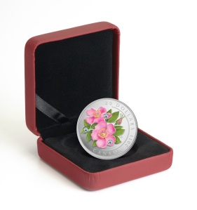 Wild Rose Coin in Box