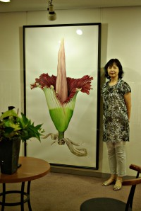 "Mieko Ishikawa with her watercolor, ""Amorphophallus titanum"". © 2012, all rights reserved."