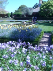 The Sunken Garden at Filoli. Photo by John Keesey.