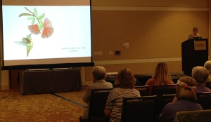Jan Boyd Haring presents Estelle De Ridders project during the Grants presentation at the ASBA conference. Photo by Deb Shaw.