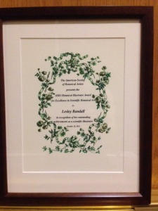 Lesley Randall's ASBA Award for Scientific Botanical Illustration