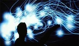 John Carpenter, interactive digital artist, on interactive digital works based on natural systems.
