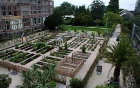 The Hortus botanicus Leiden is the oldest botanical garden in the Netherlands, and one of the oldest in the world.