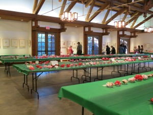 The craftsman style elegance of Descanso's Van de Kamp Hall filled with beautiful Camellia blooms was a beautiful setting for botanical artwork.