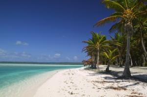 One of many beautiful beaches on Fiji.