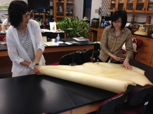 Meiko Ishikawa and Akiko Enokido unroll Reindeer Vellum to show the class what a whole skin looks like.