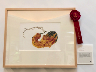 People's Choice second place award went to Lori Vreeke's, Field Pumpkin, Cucurbita pepo var.  ovifera, colored pencil on paper, © 2015 Lori Vreeke, all rights reserved.