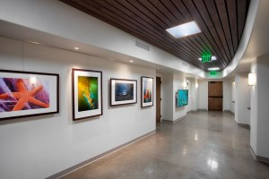 "A view of the gallery at the Santa Barbara Zoo where the ""Zoo in Bloom"" exhibition will hang."