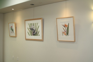 "Hanging the ""Zoo in Bloom"" BAGSC exhibition at the Santa Barbara Zoo. Photo by Lori Vreeke, © 2015, all rights reserved."