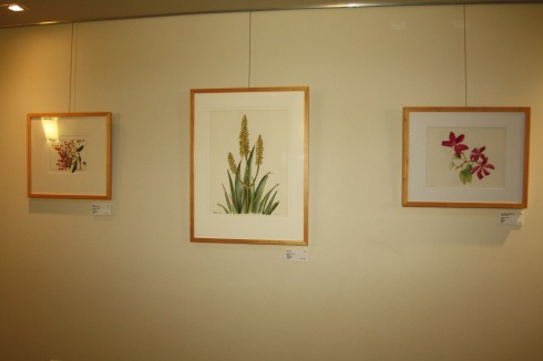 """BAGSC """"Zoo in Bloom"""" exhibition in the Discovery Pavilion at the Santa Barbara Zoo. Photo by Lori Vreeke, © 2015."""