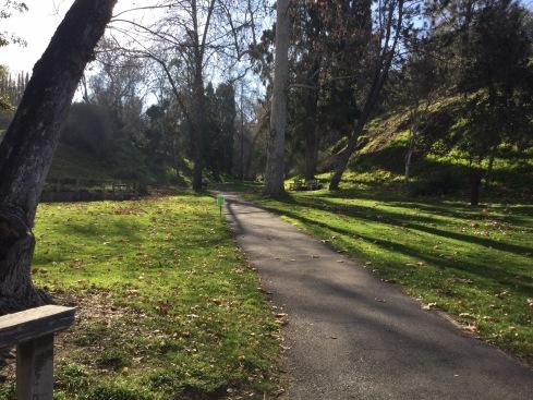 Enjoy a stroll through Alder Canyon. UC Riverside Botanic Garden. Photo: Alder Canyon lawn, Tania Marien, © 2016.
