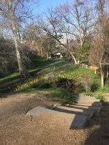 Find a staircase when you least expect it. UC Riverside Botanic Garden. Photo: View from top of stairs, looking down at conference room, Tania Marien, © 2016.