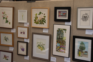 The exhibition panels showcased botanical art and plein aire paintings. Photo: Linda Carpenter, © 2016, all rights reserved.