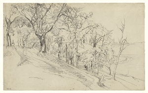 Forest in Boisrémond (recto); Cottage in a Forest (verso); Théodore Rousseau (French, 1812 - 1867); 1842; Black chalk on laid paper (recto); graphite (verso); 28.1 × 45 cm (11 1/16 × 17 11/16 in.); 2002.3
