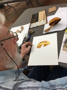 Sasha Viazmensky demonstrating initial watercolor technique for painting a mushroom.