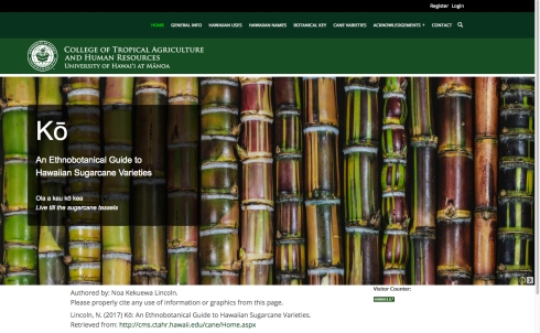"Website for ""Ko; An Ethnobotanical Guide to Hawaiian Sugarcane Varieties,"" by Noa Kekuewa Lincoln, PhD., © 2016, University of Hawai'i, Manoa, all rights reserved."