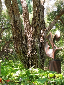 Cork oak trunk at San Diego Botanic Garden. Photo by Deb Shaw, © 2014.