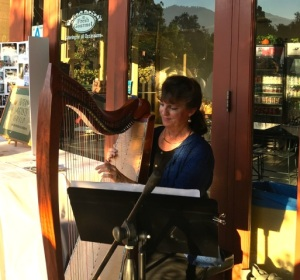 BAGSC member Terri Munroe played beautiful harp music to accompany our dinner on the Peacock Café patio.