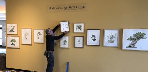 "Andrew Mitchell, The Huntington, hangs the final painting in the """"Portraits of Bonsai from The Huntington Collection"" in the Brody Botanical Center. Photo © 2018, Olga Ryabstova."