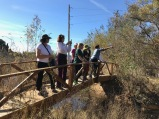 After the presentation, BAGSC members enjoyed a tour of the Marsh. BAGSC President Janice Sharp points out (?). Photo by Tania Marien, © 2018.