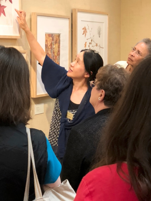Mitsuko Schultz spoke about her artwork, Sweet Gum Liquidambar styraciflua 'Burgundy' Los Angeles County Arboretum and Botanic Garden, Arcadia, California.