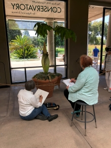 Deborah Shaw (L) and Tania Norris (R) took a few minutes to sketch Li'l Stinky.