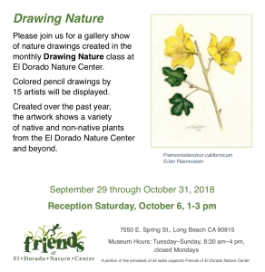 "Flyer for ""Drawing Nature"" exhibition in Long Beach, California."