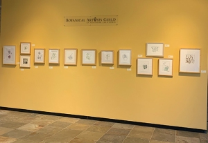 """One wall of """"Celebrating Silver."""""""