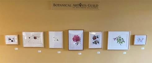 BAGSC artworks in the Brody Botanical Center at The Huntington Library, Art Museum, and Botanical Gardens.