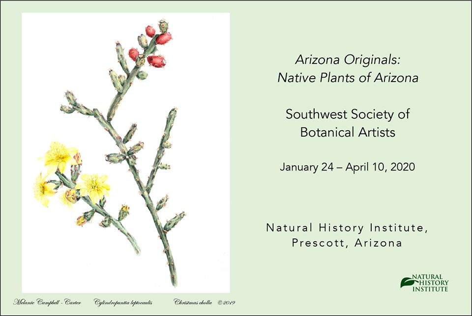 Melanie Campbell Carter To Give A Botanical Talk At The Natural