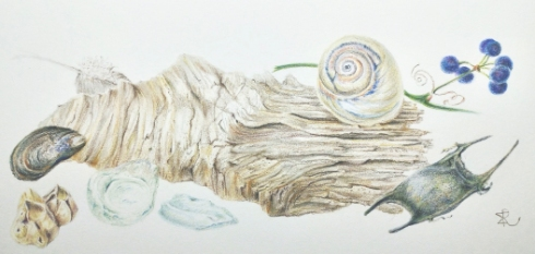 Art Retreat in Cape May, Monica Ray, colored pencil, © 2020 all rights reserved.