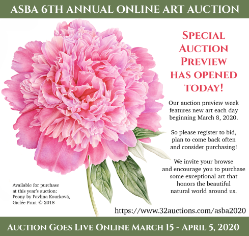 ASBA 6th Annual Online Auction